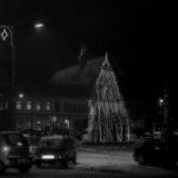 Foto Zaczynska_okolicznosciowe_(16)